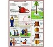 """Плакаты """"Бензомоторная пила. Безопасность работ на лесосеке"""""""
